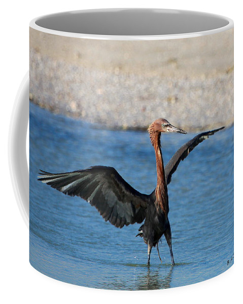 Reddish Egret Coffee Mug featuring the photograph Reddish Egret by Barbara Bowen