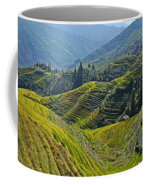 China Coffee Mug featuring the photograph Rice Terraces In Guilin, China by Moshe Torgovitsky