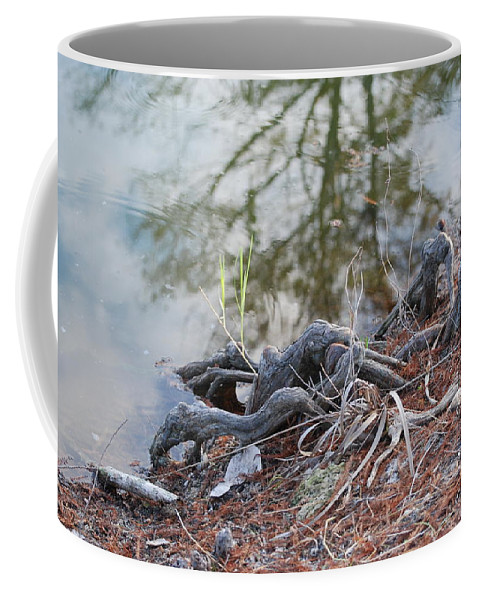 Roots Coffee Mug featuring the photograph Rooted Lake Edge by Rob Hans