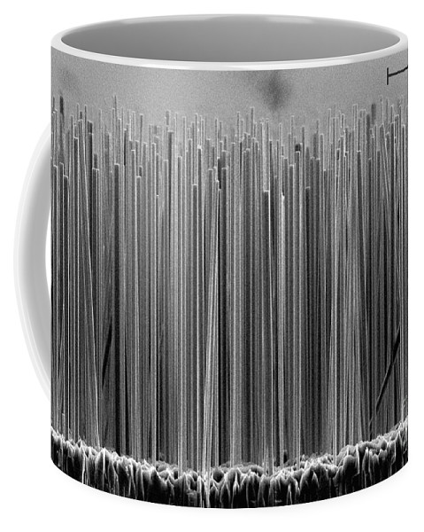 Science Coffee Mug featuring the photograph Semiconductor Nanowires, Sem by Lorelle Mansfield/NIST