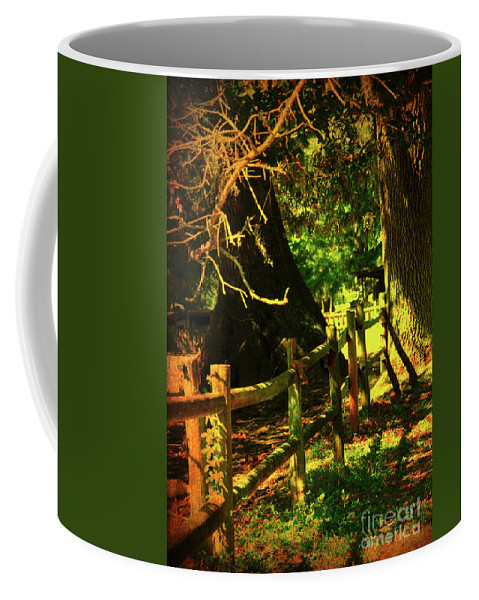 Fence Coffee Mug featuring the photograph Silence by Susanne Van Hulst