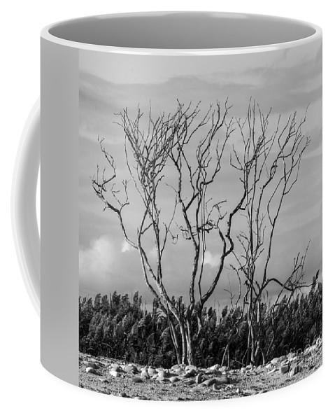 Natanson Coffee Mug featuring the photograph Silhouette by Steven Natanson