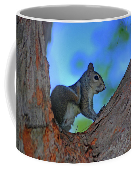 Squirrel Coffee Mug featuring the photograph 1- Squirrel by Joseph Keane