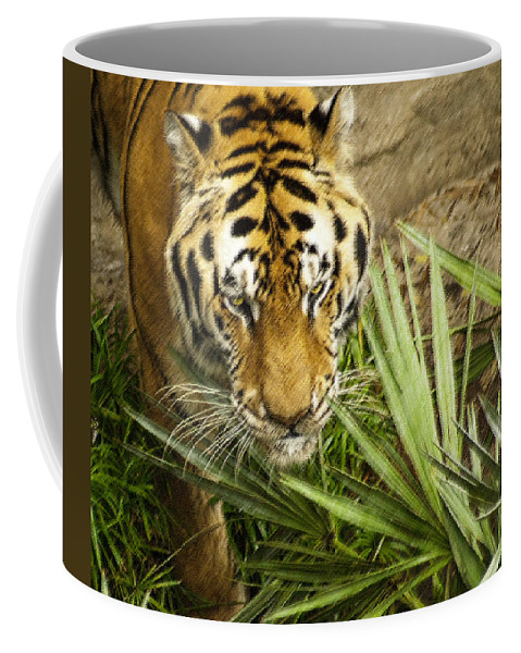 Bengal Tiger Coffee Mug featuring the photograph Stalking Tiger by Carolyn Marshall