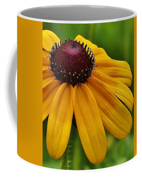 Flora Coffee Mug featuring the photograph Summer Delight by Bruce Bley