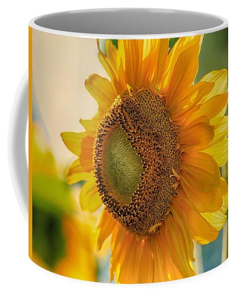 Summer Morning Coffee Mug featuring the photograph Summer Morning by Lynn Hopwood
