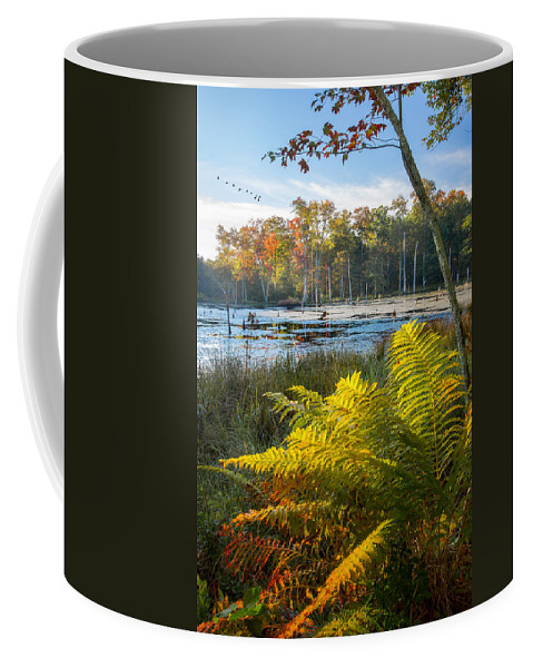 Swamp Coffee Mug featuring the photograph Sunrise In The Swamp by Bill Wakeley