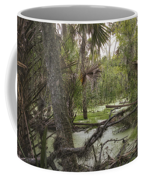 Swamp Coffee Mug featuring the photograph Swamped by Louise Hill