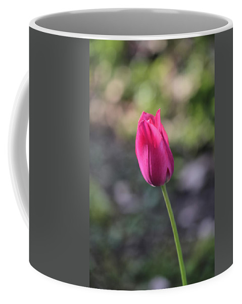 Pink Coffee Mug featuring the photograph Take A Bow by Theresa Campbell