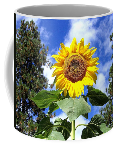 Sunflower Coffee Mug featuring the photograph Tall And Sunny by Will Borden
