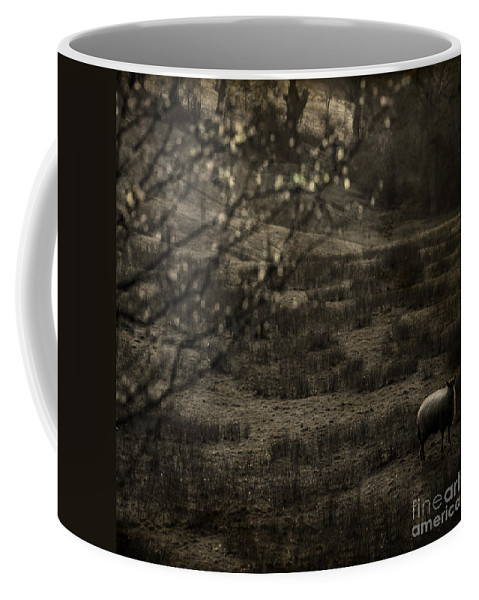Easter Coffee Mug featuring the photograph The Countryside by Angel Ciesniarska