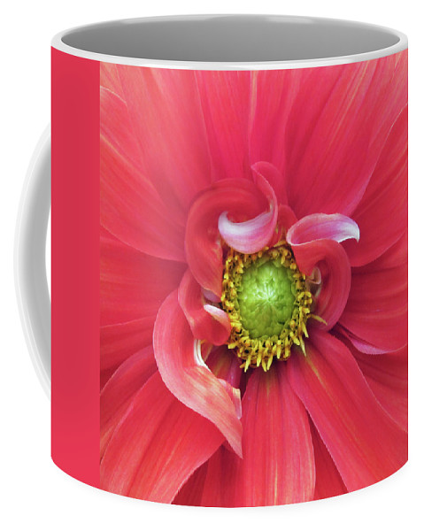 Photograph Of Dahlia Coffee Mug featuring the photograph The Dahlia by Gwyn Newcombe