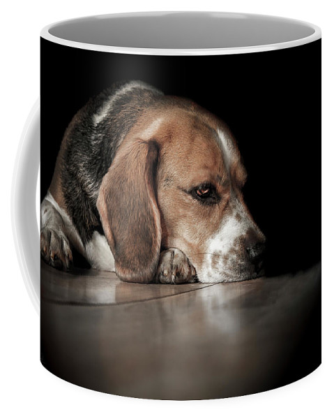 Beagle Coffee Mug featuring the photograph The Day Dreamer by Paul Neville