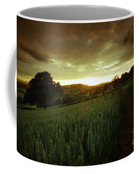 Landscape Coffee Mug featuring the photograph The End Of The Day by Angel Ciesniarska