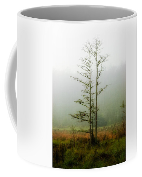 Tree Coffee Mug featuring the photograph The Foggy Dew by Rich Leighton