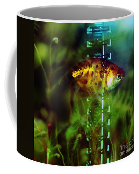 Fish Coffee Mug featuring the photograph The Goldfish by Angel Ciesniarska