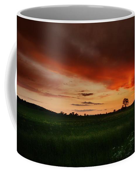 Sunset Coffee Mug featuring the photograph The Holy Tree by Angel Tarantella