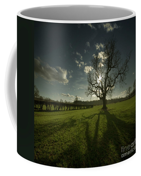 Tree Coffee Mug featuring the photograph The Lonely Tree by Angel Tarantella