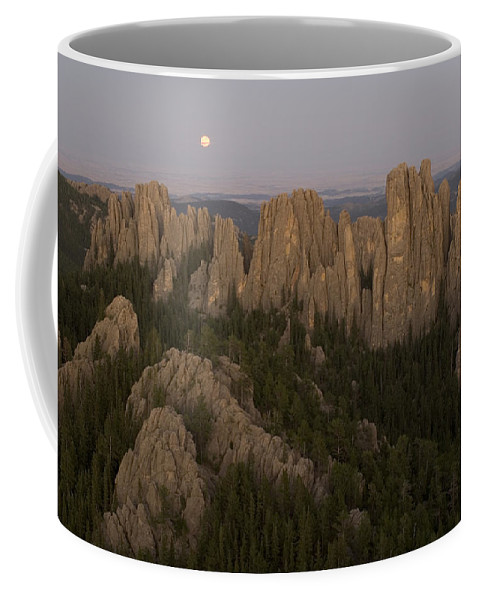 Nobody Coffee Mug featuring the photograph The Needles Protrude From Forests by Phil Schermeister