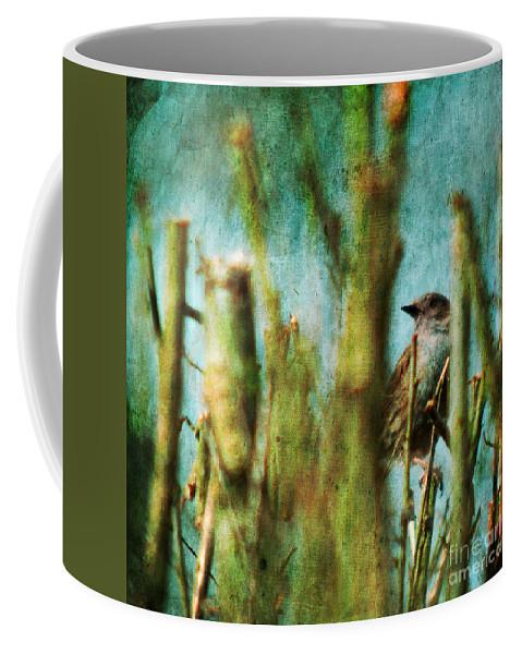Thrush Coffee Mug featuring the photograph The Thrush by Angel Ciesniarska