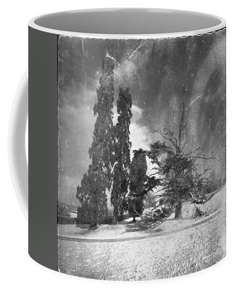 Tree Coffee Mug featuring the photograph The Winter Time by Angel Tarantella