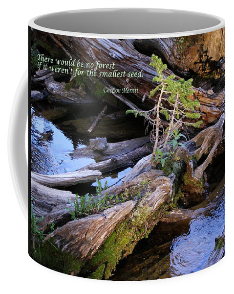 Water Coffee Mug featuring the photograph There Would Be No Forest... by DeeLon Merritt