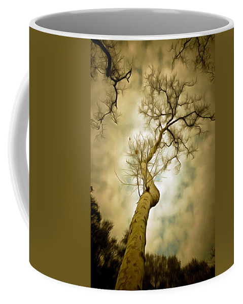 Tree Top In The Clouds Coffee Mug featuring the photograph Tree Top In The Clouds by Barbara Snyder