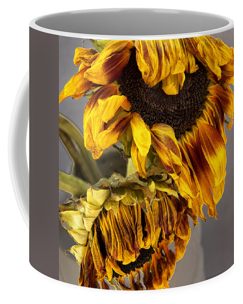 Tournesols Coffee Mug featuring the photograph Two Sunflowers Tournesols by William Dey