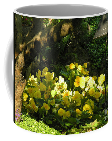 Yello Coffee Mug featuring the photograph Untitled by Diane Greco-Lesser