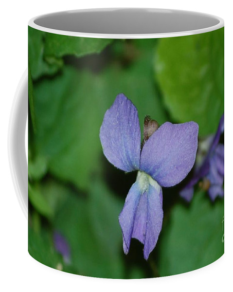 Landscape Coffee Mug featuring the photograph Violet by David Lane