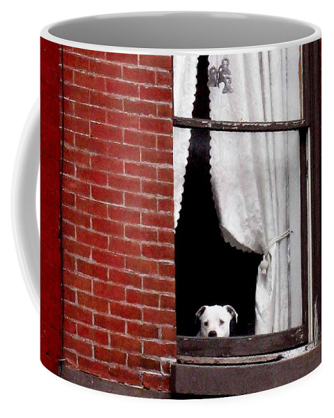 Brooklyn Coffee Mug featuring the photograph Waiting For Master by Jeff Watts