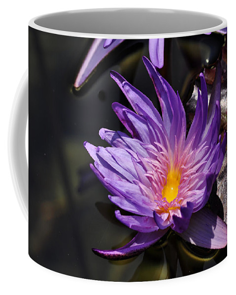 Clay Coffee Mug featuring the photograph Water Floral by Clayton Bruster