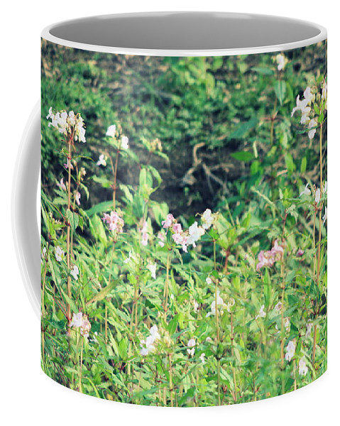 Wilderness Coffee Mug featuring the photograph Wild Flowers by Frances Lewis