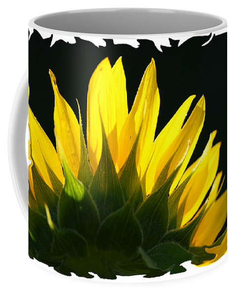 Sunflower Yellow Plant Green Photograph Phogotraphy Digital Art Coffee Mug featuring the photograph Wild Sunflower by Shari Jardina