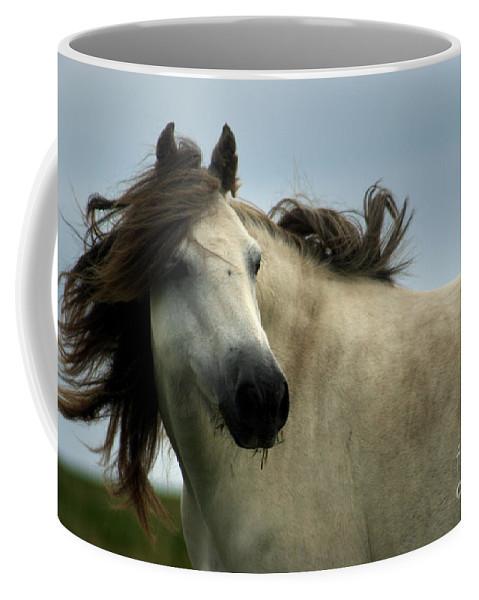 Horse Coffee Mug featuring the photograph Wind In The Mane by Angel Ciesniarska