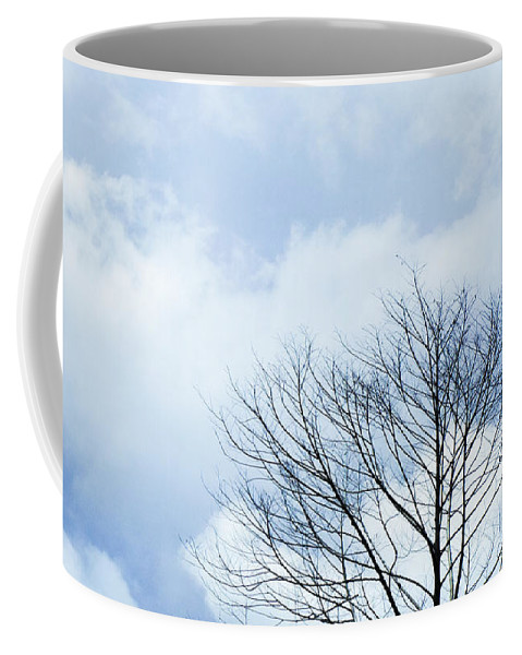 Winter Fall White Sky Coffee Mug featuring the photograph Winter Tree by Adelista J