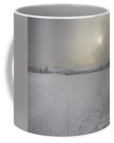 Winter Coffee Mug featuring the photograph Wintery Landscape by Angel Ciesniarska