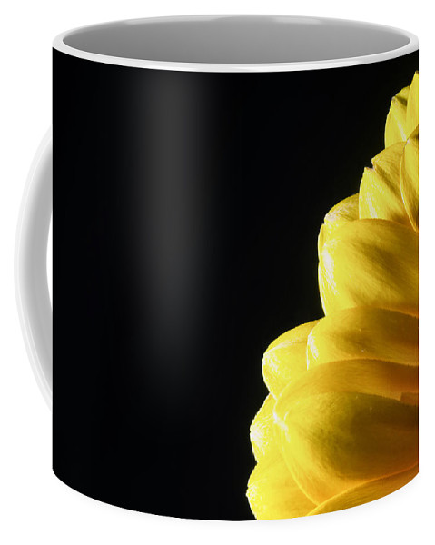 Color Coffee Mug featuring the photograph Yellow Gerbera Flower by John Williams