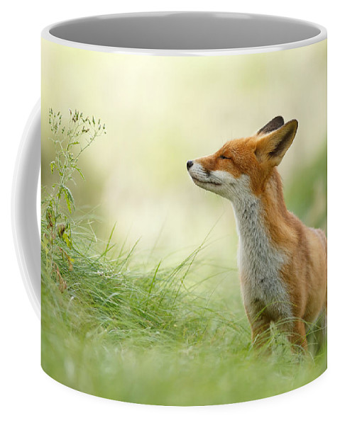 Fox Coffee Mug featuring the photograph Zen Fox Series - Zen Fox by Roeselien Raimond