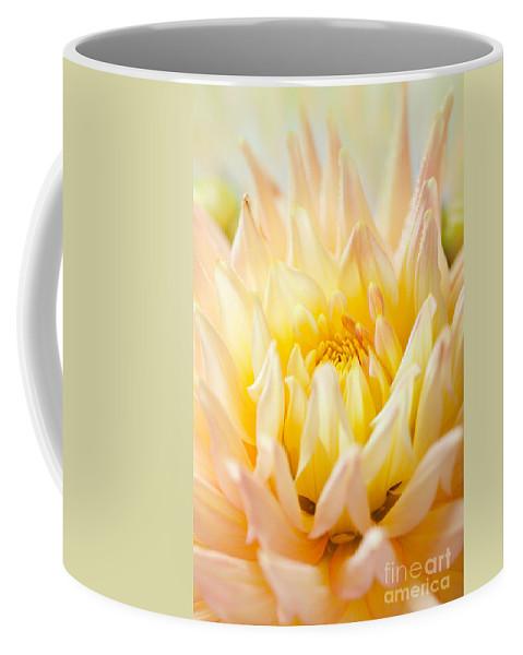 Dahlia Coffee Mug featuring the photograph Dahlia by Nailia Schwarz