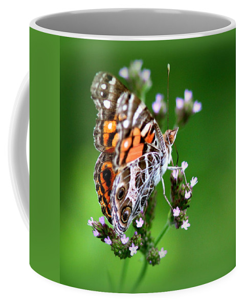 Butterfly Coffee Mug featuring the photograph 1074- Butterfly by Travis Truelove