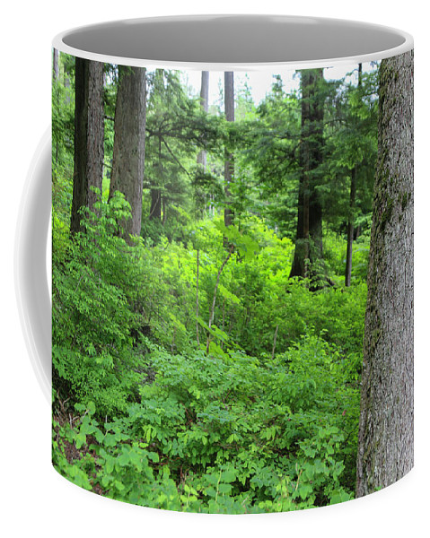 Coffee Mug featuring the photograph Alaska_00011 by Perry Faciana