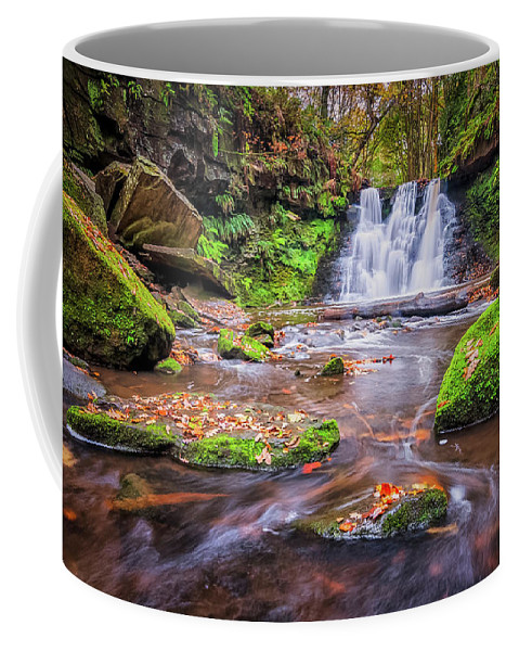 Waterfall Coffee Mug featuring the photograph Goit Stock Waterfall by Mariusz Talarek