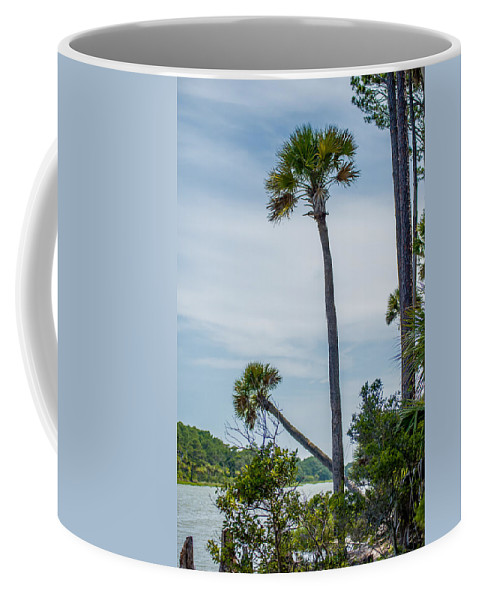 Beaufort Coffee Mug featuring the photograph Palmetto Forest On Hunting Island Beach by Alex Grichenko