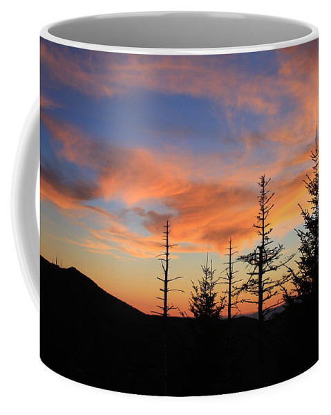 Coffee Mug featuring the photograph Blue Ridge Parkway by Mountains to the Sea Photo