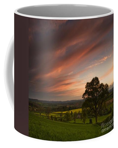 Landscape Coffee Mug featuring the photograph The Sunset by Angel Ciesniarska