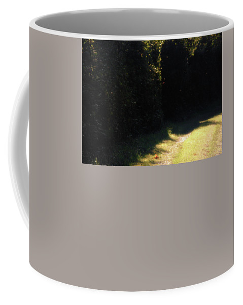 Grassland Coffee Mug featuring the photograph Countryside by Ellie-May