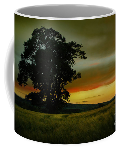 Sunset Coffee Mug featuring the photograph The Sunset by Angel Tarantella
