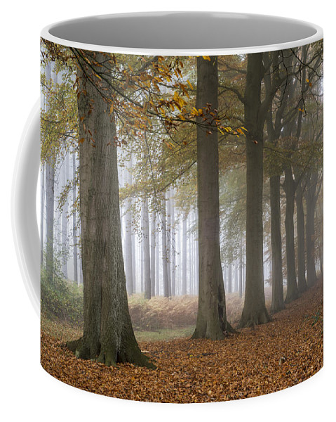 Row Coffee Mug featuring the photograph 151124p094 by Arterra Picture Library