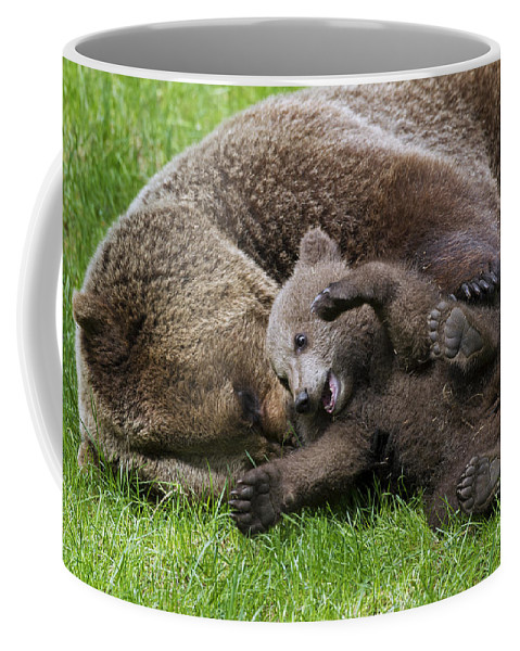 Cute Coffee Mug featuring the photograph 151207p136 by Arterra Picture Library
